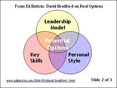 David Bradford on Real Options